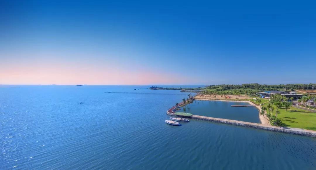 海南自贸港进入全面实施阶段 湛江率先享受红利辐射 鼎龙天海湾插图
