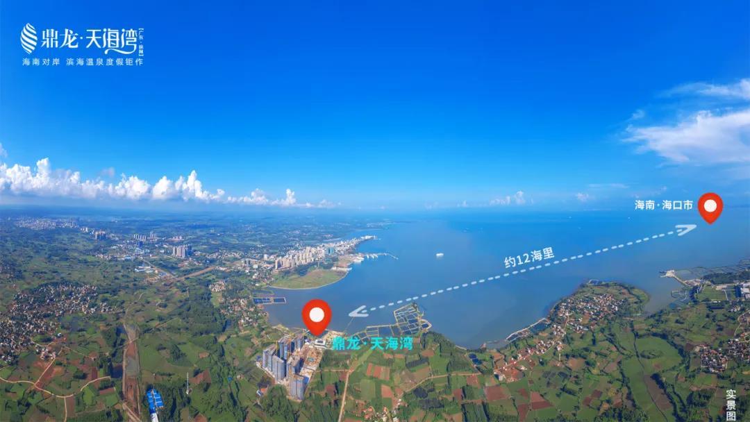海南自贸港进入全面实施阶段 湛江率先享受红利辐射 鼎龙天海湾插图(5)